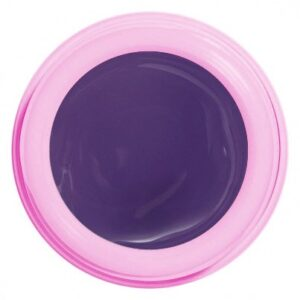 GEL PAINT 1005 PURPLE RAIN