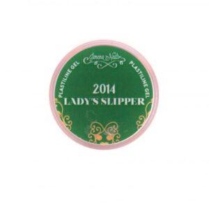 GEL PASTE 2014 LADY´S SLIPPER